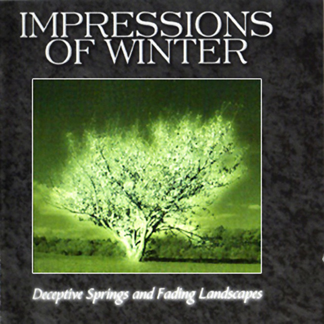 Impressions Of Winter
