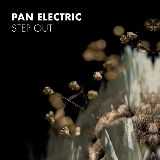 Pan Electric