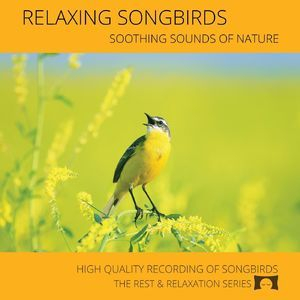 Relaxing Songbirds: Soothing Sounds Of Nature