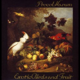 Procol Harum - Exotic Birds & Fruit '1974