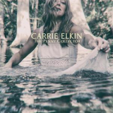 Carrie Elkin - The Penny Collector '2017