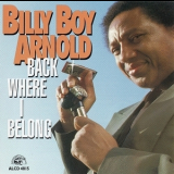 Billy Boy Arnold - Back Where I Belong '1993