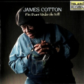 James Cotton - Fire Down Under The Hill '2000