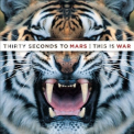 30 Seconds To Mars - This Is War '2009