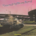 Downchild Blues Band - Road Fever '1980
