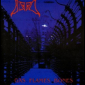 Blood, The - Gas Flames Bones '1999